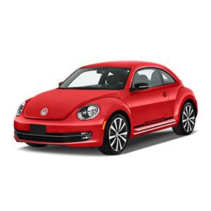 coccinelle-beetle